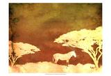 Safari Sunrise III Prints by Pam Ilosky