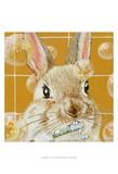 Bubbles - Robert Prints by Dlynn Roll