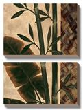 Temperate Flora Poster di Yvette St. Amant