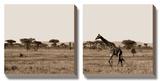 Serengeti Horizons II Poster af Jeff Maihara