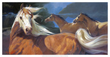 Storm Chasers Giclee Print by Carolyne Hawley