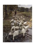 The Watersplash Giclee Print by Henry Herbert La Thangue