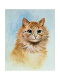 Ginger Tom Reproduction procédé giclée par Louis Wain