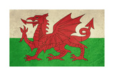 Grunge Welsh Dragon Flag Illustration, Isolated On White Background Posters by  Speedfighter