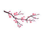 Cherry Blossom In Spring Time Posters par  photosoup