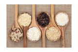 Rice Varieties In Olive Wood Spoons Over Hessian Background Taide tekijänä  marilyna