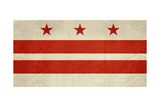 Grunge City Flag Of Washington D.C, U.S.A Prints by  Speedfighter