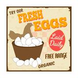 Fresh Eggs Vintage Poster Print by  radubalint