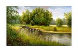 Summer Wood Lake With Trees And Bushes Posters par  balaikin2009