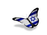 Israeli Flag Butterfly Flying, Isolated On White Background Kunstdrucke von  suns_luck