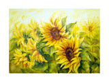 Sunny Sunflowers, Oil Painting On Canvas Print by  Valenty