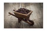 Coffee Beans In A Wheelbarrow Poster tekijänä  kbuntu
