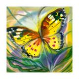 The Yellow-Red Butterfly In Flight Affiche par  balaikin2009