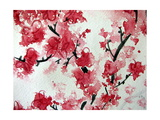 Cherry Blossom Watercolor On Paper Affiches par Kathie Nichols