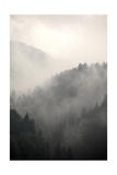 Fog Covering The Mountain Forests Posters par  Gudella