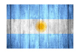 Flag Of Argentina Print by Miro Novak