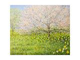 Springtime Impression Prints by  kirilstanchev
