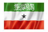 Somaliland Flag Affiches par  daboost