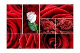 Lovely Roses Mosaic Posters par  duallogic