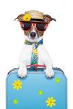 Holiday Dog Reproduction photographique par Javier Brosch