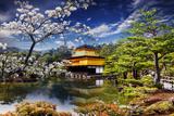 Gold Temple Japan Bedruckte aufgespannte Leinwand von  NicholasHan