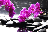 Branch Purple Orchid Flower With Therapy Stones Lámina fotográfica por  crystalfoto