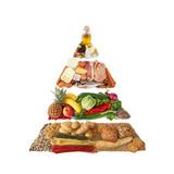 Food Pyramid Print by  egal