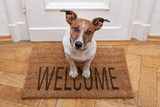 Dog Welcome Home Reproduction photographique par Javier Brosch