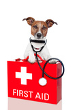 First Aid Dog Reproduction photographique par Javier Brosch