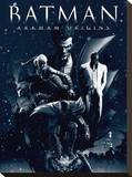 Batman Arkham Origins (Montage) Stampa su tela
