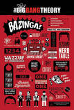 The Big Bang Theory Infographic Kunstdruck