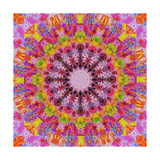 Mandala Of Happiness II Print by Alaya Gadeh