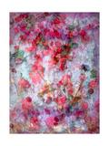 Red Roses Dream Posters av Alaya Gadeh