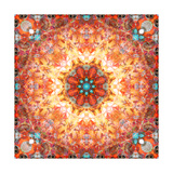 Seashell and Flower Mandala Orange Energy Poster by Alaya Gadeh