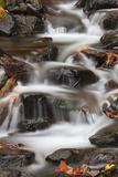 Tanner Creek, Columbia River Gorge, Oregon, USA Fotografie-Druck von Jamie & Judy Wild