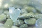 Heart-Shaped Beach Glass and Wet Rocks, Seabeck, Washington, USA Lámina fotográfica por  Jaynes Gallery