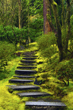 Spring on the Steps, Portland Japanese Garden, Portland, Oregon, USA Photographic Print by Michel Hersen