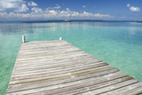 Pier over Clear Waters, Southwater Cay, Stann Creek, Belize Stretched Canvas Print by Cindy Miller Hopkins