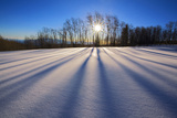 Snow Field, Boulder Mountain, Dixie National Forest, Utah, USA Photographic Print by Charles Gurche