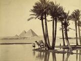 The Pyramids, 1860-69 Fotografisk tryk af G. Lekegian