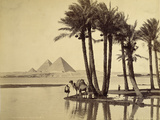 The Pyramids, 1860-69 Photographic Print by G. Lekegian