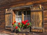 Traditional Window with Planter, Tyrol, Austria Fotografisk trykk av Martin Zwick