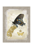 Natural Life, Rare Butterfly Poster von Chad Barrett