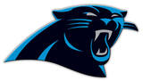 NFL Carolina Panthers Vinyl Magnet Imã