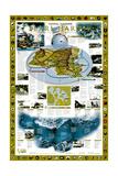 2001 Pearl Harbor Plakater av  National Geographic Maps