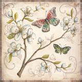 Le Jardin Butterfly III Poster by Kate McRostie