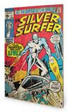 Silver Surfer - Must Live Wood Sign Treskilt