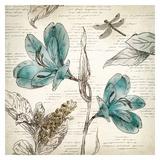 Blooming Teal I - Mini Posters par Aimee Wilson