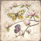 Le Jardin Butterfly IV Prints by Kate McRostie