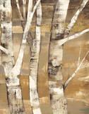 Wandering Through the Birches II Posters by Albena Hristova